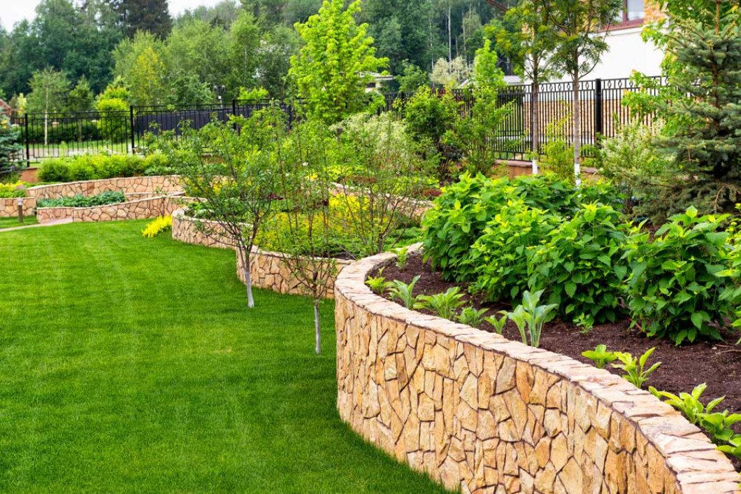Your Yard Isn't Reaching Its Potential